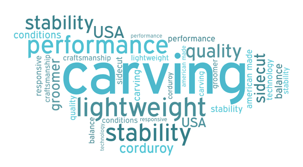 Word cloud carver skis
